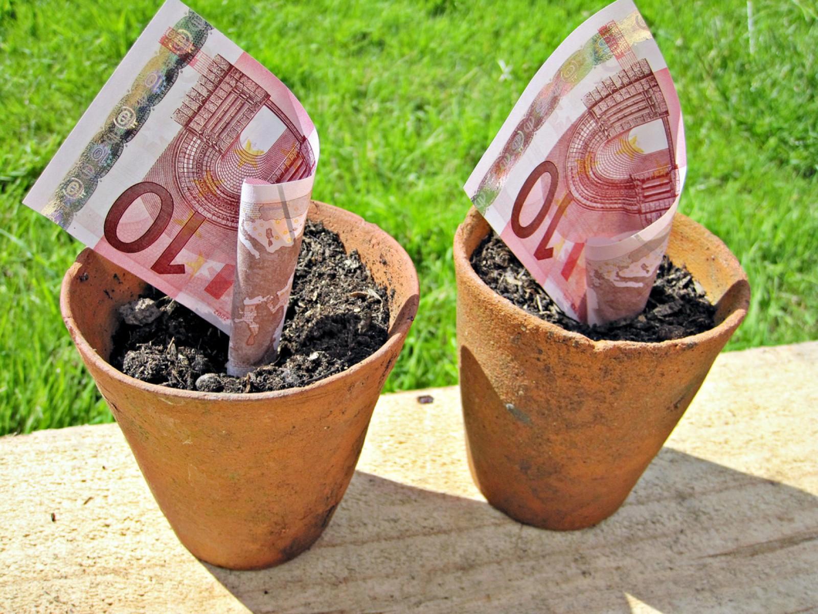 având bani cum să faci bani