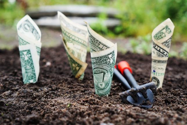 cum poți începe să câștigi bani pe internet