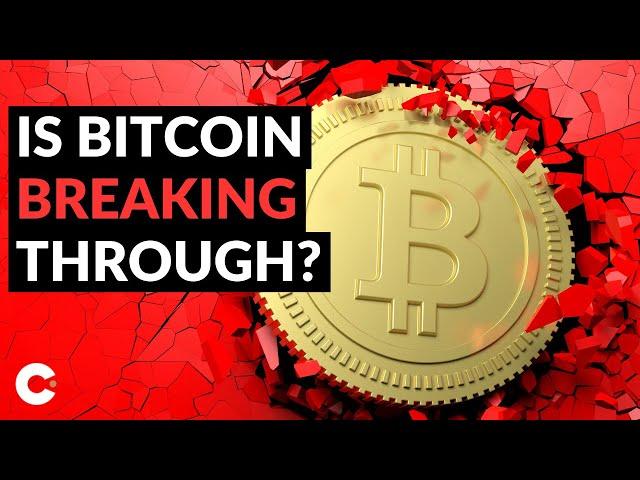 de a tranzacționa Bitcoin: Un ghid all inclusive de tranzacționare Bitcoin